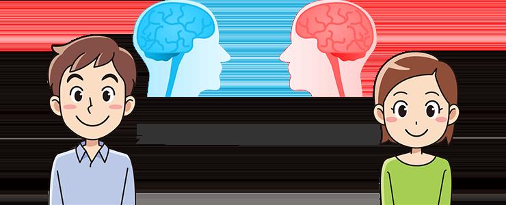 男女で異なる脳みそ